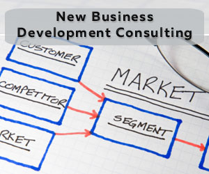 New Business Development Consulting
