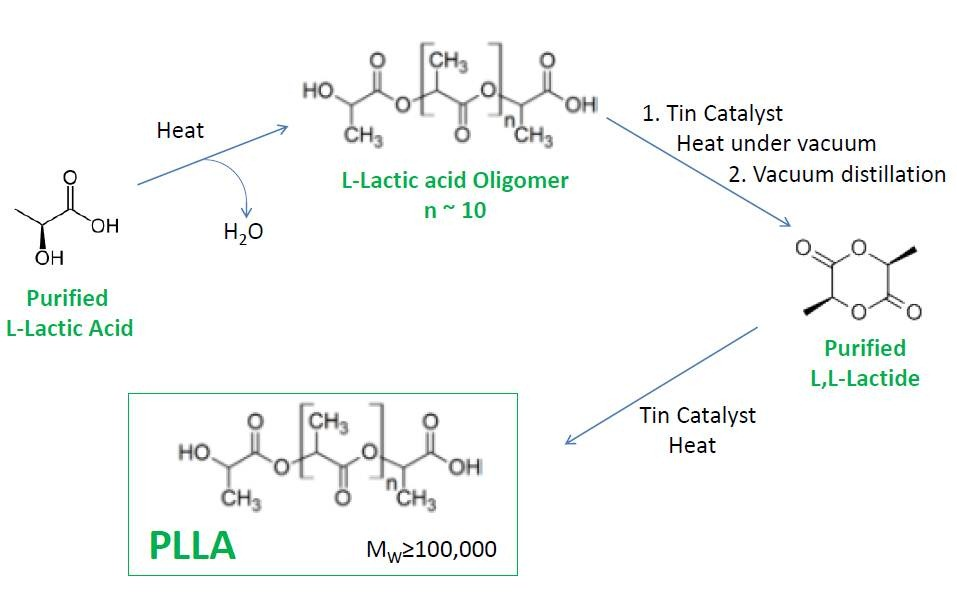 From Corn to Polylactic Acid Part 2: Making the PLA Polymer ...