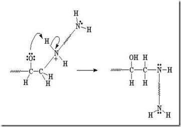 Epoxy amine 2