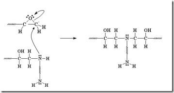 Epoxy amine reaction 3
