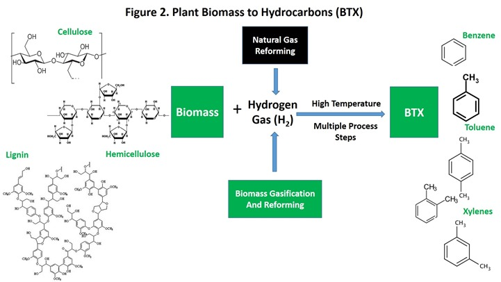 Figure 2 Plant Biomass to Hydrocarbons